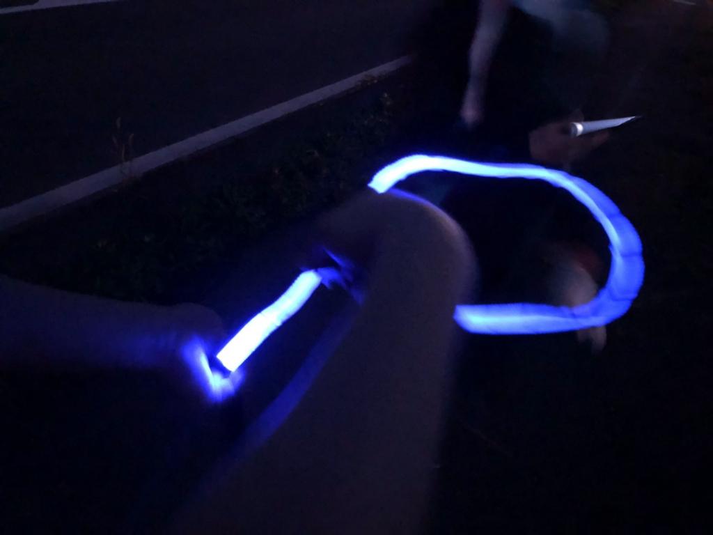 NIGHT SCOUT LED Dog Leashの光